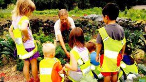 New Zealand Là Quốc Gia Có Nền Giáo Dục Thân Thiện Với Môi Trường Nhất Thế Giới 2