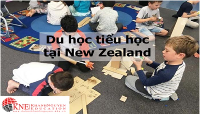 DU HỌC TIỂU HỌC TẠI NEW ZEALAND