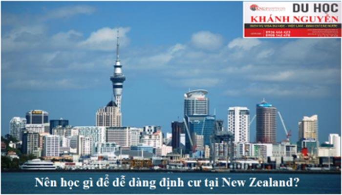 Nên học gì để dễ dàng định cư tại New Zealand?