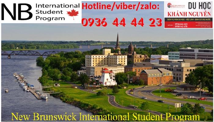 New Brunswick International
